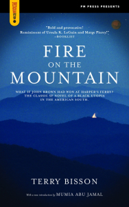 Fire on the Mountain (e-Book)